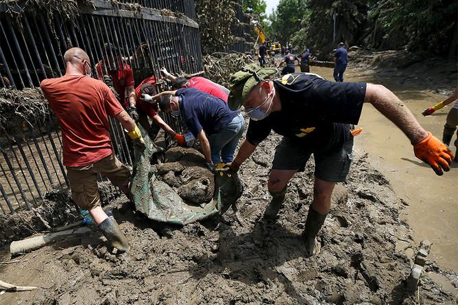 Сотрудники грузят животных зоопарка Тбилиси, погибших в результате сильного ливня и наводнения в ночь на 14 июня
