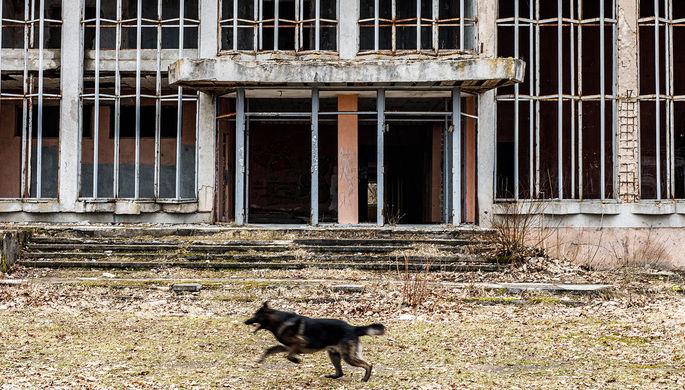 «Без лакомых кусков»: почему в России провалили программу приватизации