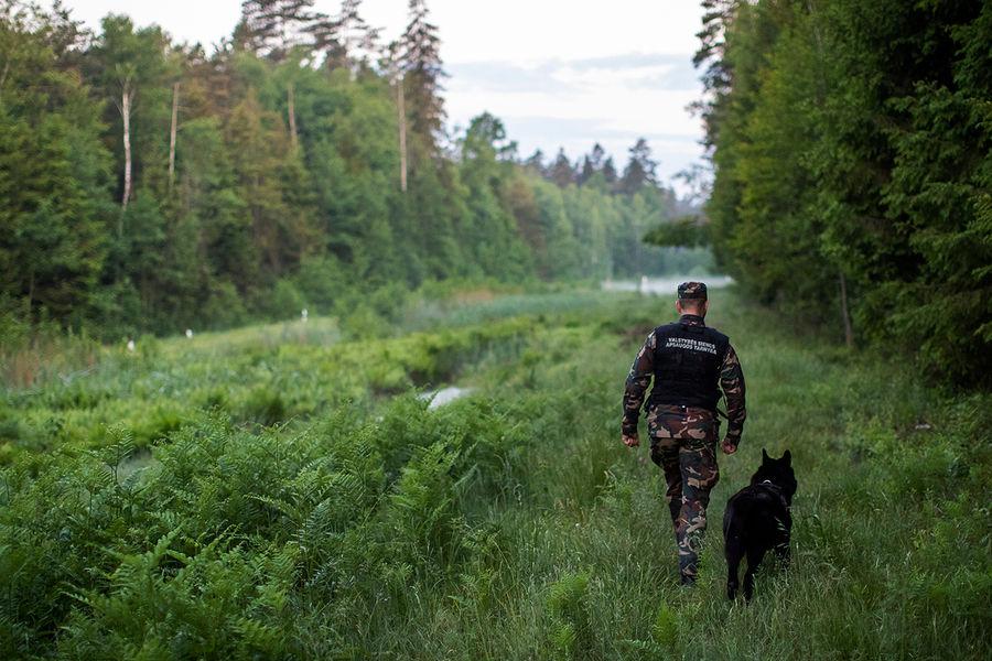 Патрулирование литовско-белорусской границы, 2021 год