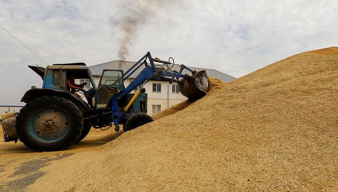 Продразверстка: чем обернутся экспортные квоты на зерно