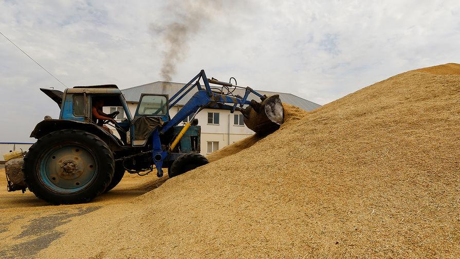 Экспортеры зерна из России исчерпали квоту на два месяца раньше срока