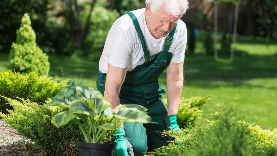 Составлен список самых высокооплачиваемых вакансий для пенсионеров