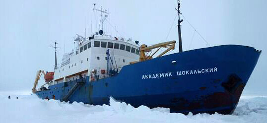 Из-за плотных льдов ледоколы не могут подойти к судну «Академик Шокальский»