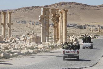 Солдаты сирийской армии в исторической части Пальмиры, 1 апреля 2016 года