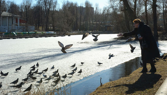 В Москве в среду ожидается до 9°С