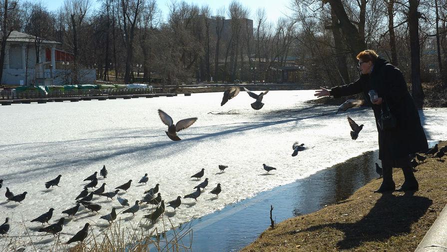 Жителям ряда регионов России пообещали аномальное тепло