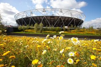 В Лондоне бережно относятся к экологии