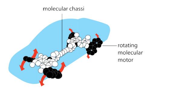 Модель молекулярной машины Феринги