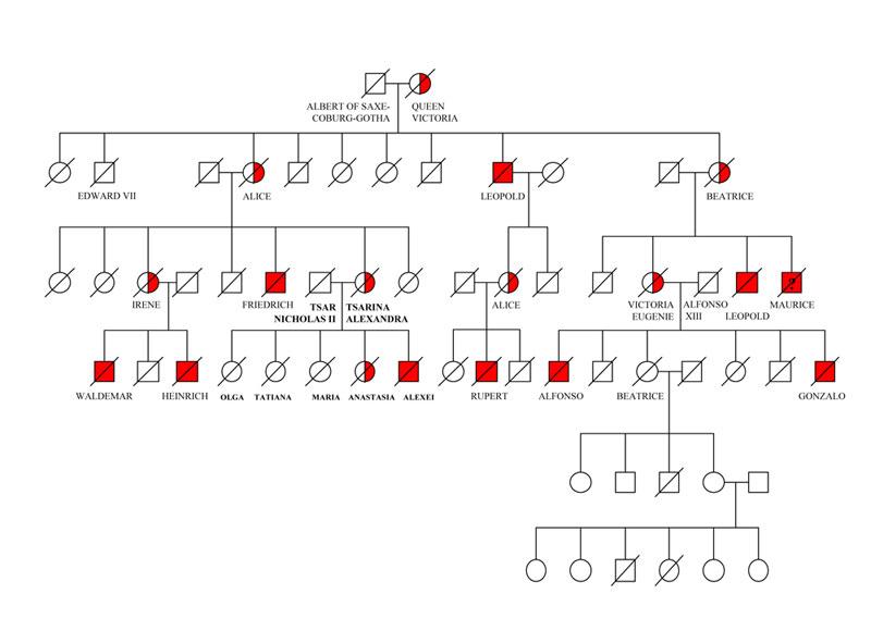 Российские ученые исследовали форму и генетическую причину ...