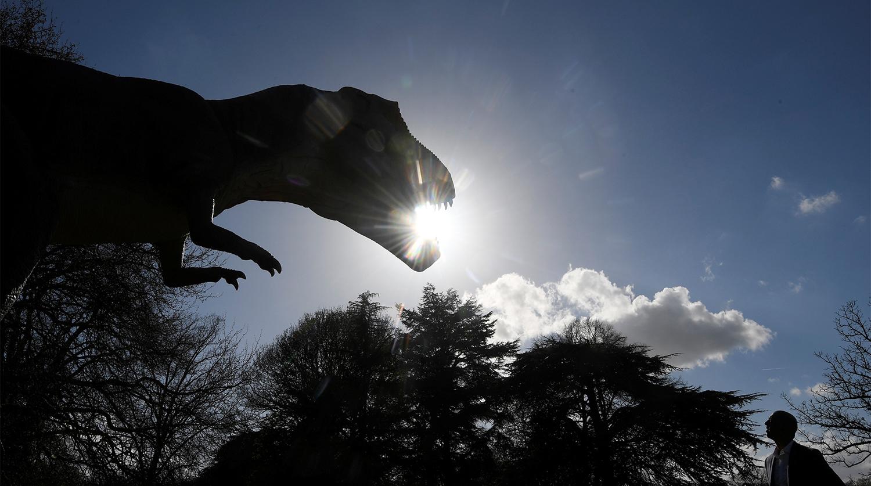 Следы динозавра обнаружили в Китае