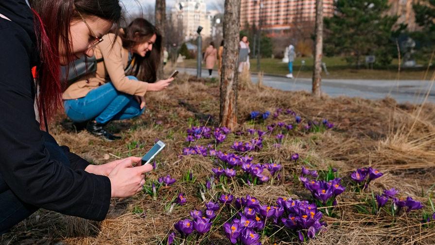 Синоптики назвали сроки прихода весны в Россию - Газета.Ru