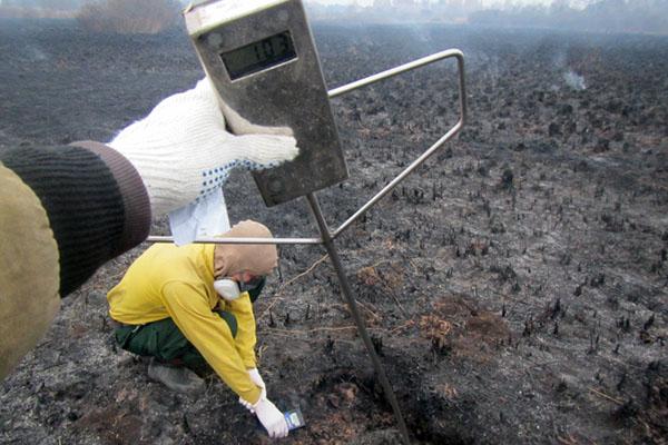 Показания термометра. Источник: Greenpeace России