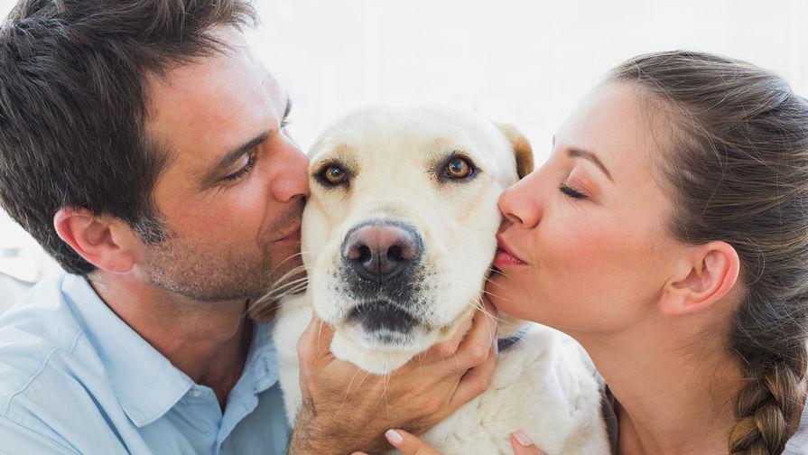 Ученые узнали, как собаки научились манипулировать людьми
