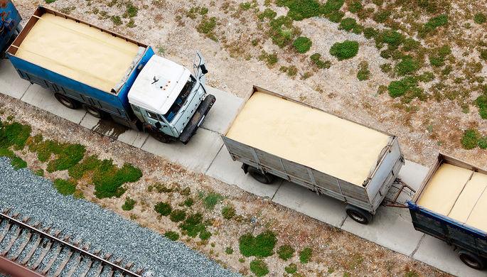 Ревизия грузов: почему таможня не дает «добро» зерну