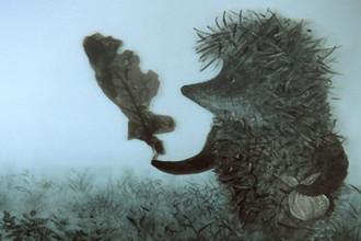 «Ежик в тумане» (1975), реж. Юрий Норштейн