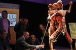 Экспонаты анатомической выставки доктора Гюнтера фон Хагенса «Мир тела» (Body Worlds) наВДНХ вМоскве