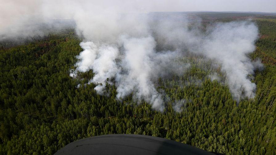 В Гидрометцентре рассказали о пожарной опасности в Сибири