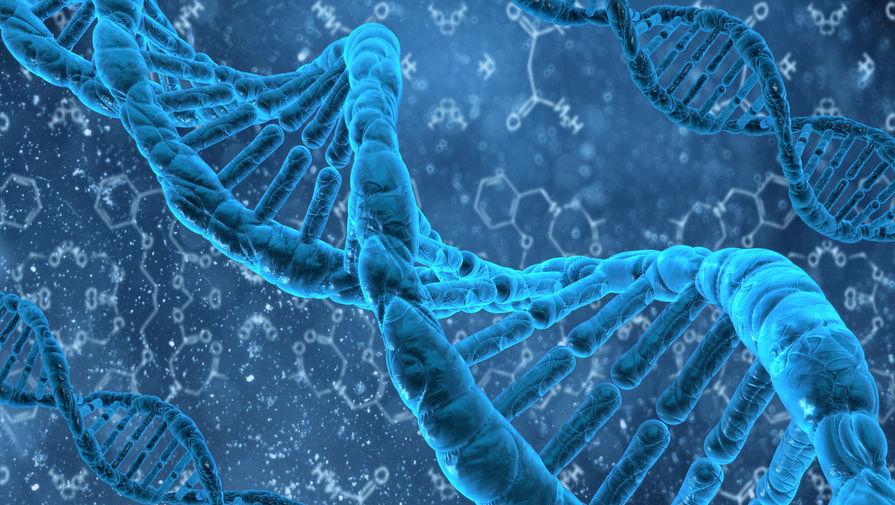 Это не мусор: как некодирующая ДНК защищает организм от вирусов