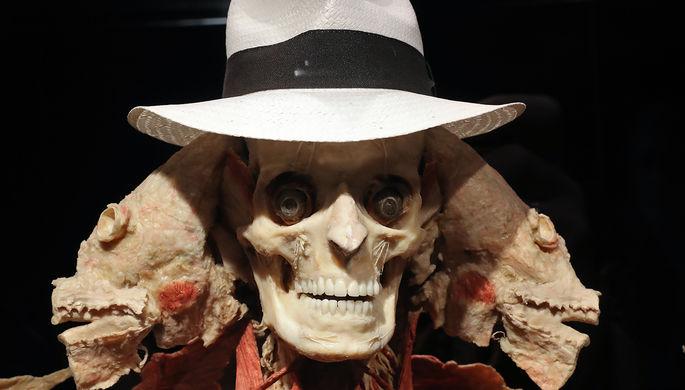 Экспонат анатомической выставки доктора Гюнтера фон Хагенса «Мир тела» (Body Worlds) на ВДНХ в Москве