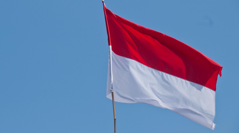 Президент Индонезии решил поменять столицу в стране