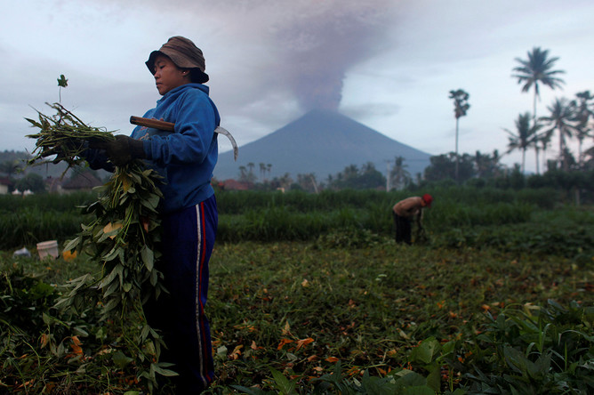 Фермеры на фоне извержения вулкана Агунг на Бали, 26 ноября 2017 года
