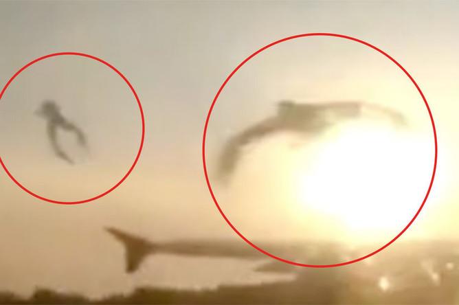 Момент попадания чаек в самолет А321 «Уральских авиалиний»