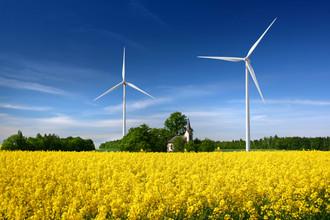 В Европе сельхозпосадки все чаще соседствуют с ветряными электростанциями