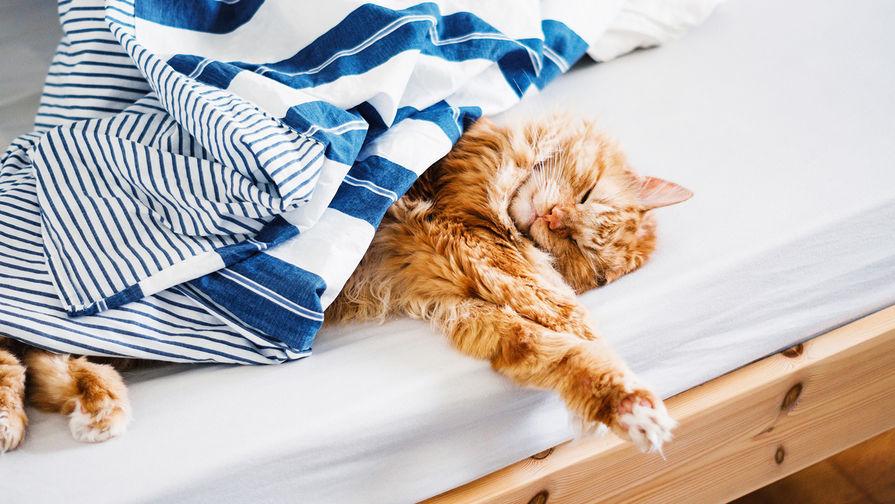 Определено необходимое для красоты и здоровья количество сна