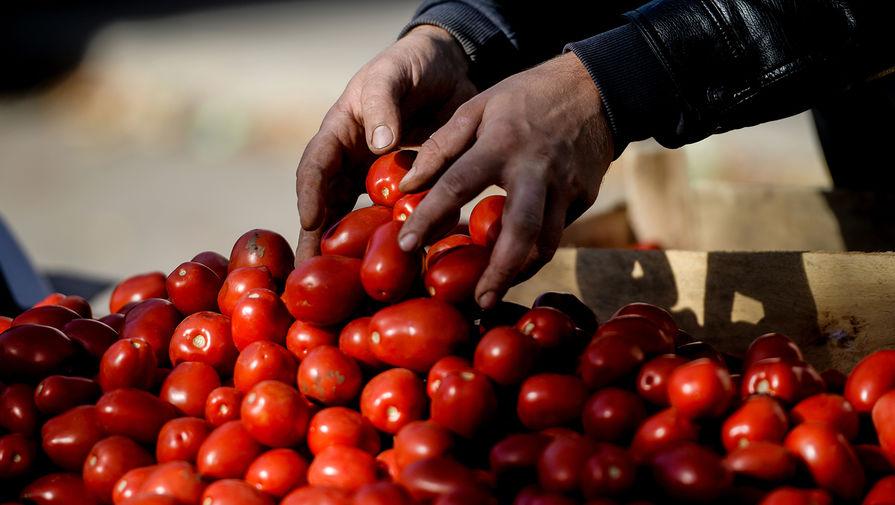 Правительство ограничило госзакупки импортных помидоров и огурцов