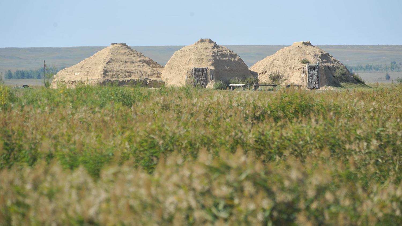 Реконструкция жилища каменного века в историко-культурном заповеднике «Аркаим»