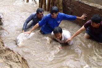 Во Вьетнаме в результате наводнения погибли около 100 человек