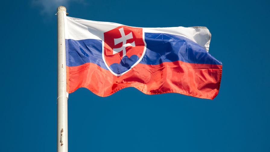 Второй тур президентских выборов пройдет в Словакии