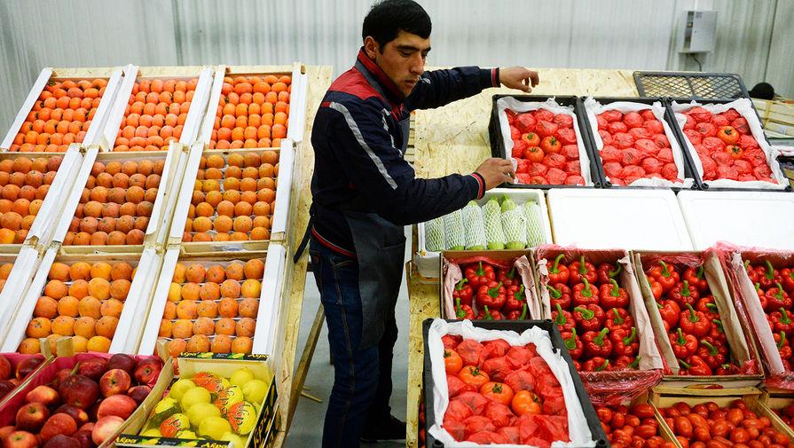 Россельхознадзор нашел новый вирус в узбекских помидорах