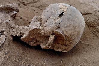 Убитый человек лежал лицом вниз, травмы черепа говорят об убийстве, например, деревянной дубиной