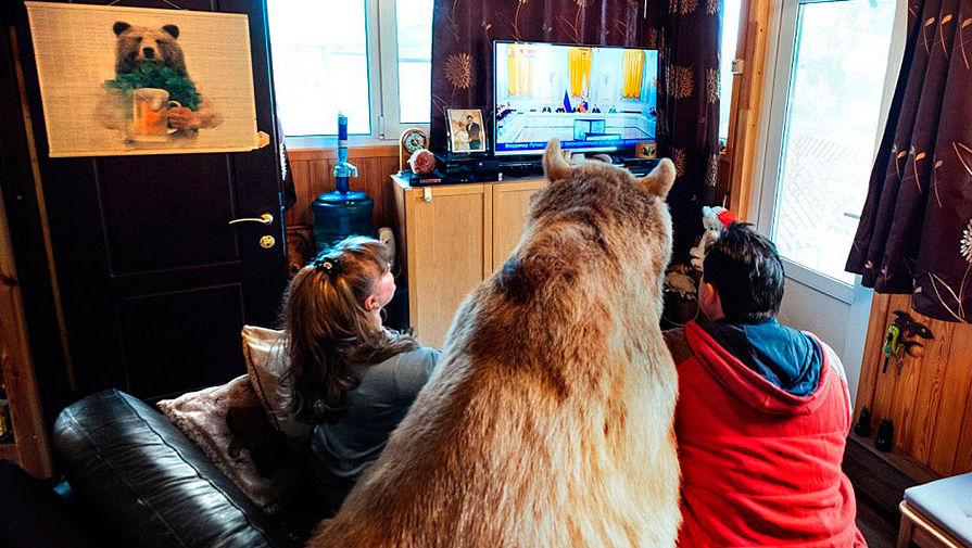 один медвежонок смотрит телевизор картинки конь пальто разве