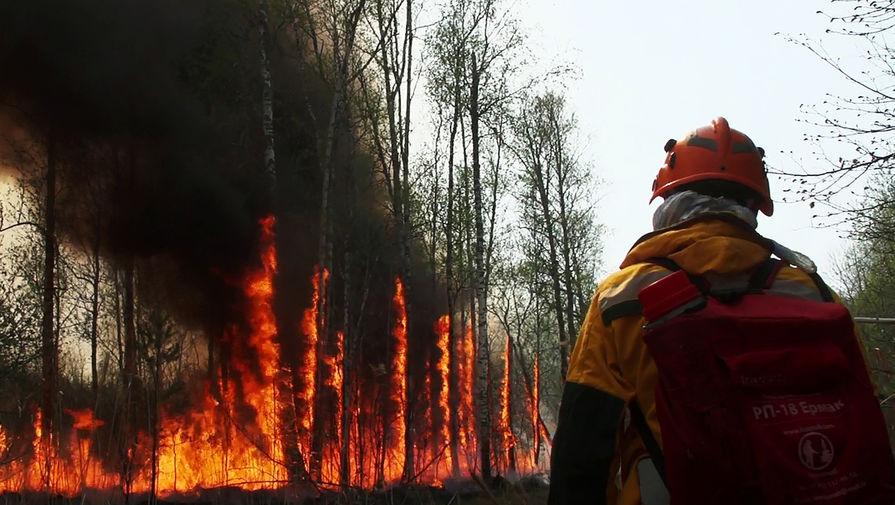 Площадь пожара вблизи детского лагеря в Башкирии увеличилась в 15 раз