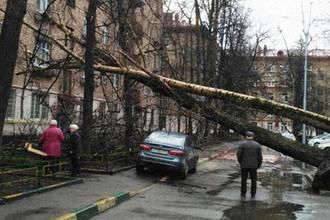 Последствия сильного ветра на улице 7-я Парковая на востоке Москвы, 21 апреля 2018 года