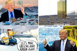 Make Greenland green again!