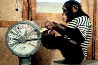Кадр из кинофильма «Полосатый рейс» (1961)