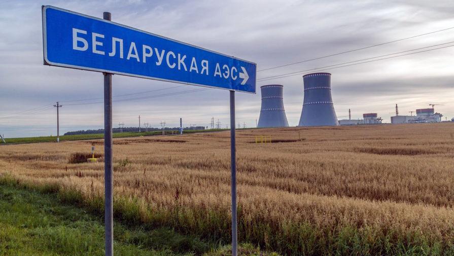 Премьер Литвы призвала ввести санкции против компаний, участвующих в строительстве БелАЭС