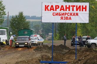 Карантинный пост в Алтайском крае, 2012 год