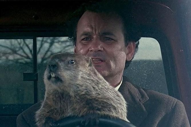 В фильме «День сурка» каждый день Фил Коннорс (Билл Мюррей) после пробуждения оказывается в одном и том же месте и опять видит на календаре 2 февраля