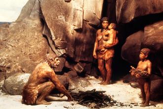 Сравнение геномов неандертальцев, денисовцев и современных людей показало, что разные группы гоминид встречались, общались и оставляли потомство