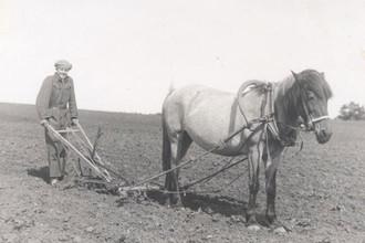 Юный финский крестьянин XIX века