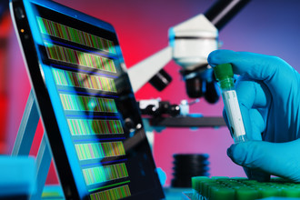Молекулы ДНК и компьютерные программы строятся по единым законам