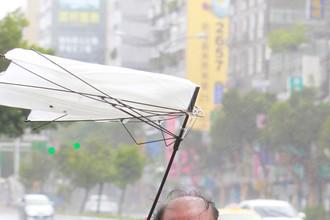 Тайфун «Соуделор» принес проливные дожди и сильные ветры с порывами до 200 км/ч, Тайбэй, 8 августа 2015 года