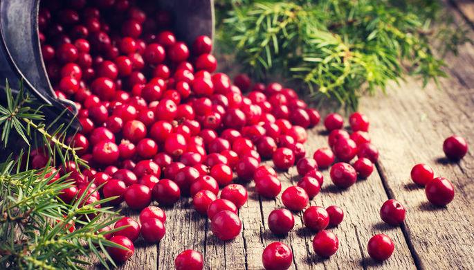 «Только выглядят хорошо»: названы самые бесполезные ягоды