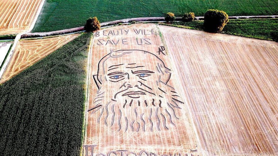 Итальянский тракторист изобразил Достоевского на поле с пшеницей
