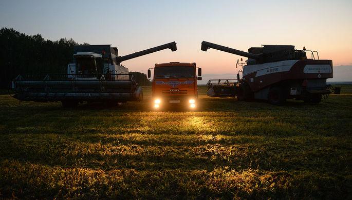 Скачок вперед: в ФРГ отметили рост сельского хозяйства России