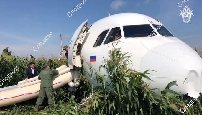 На месте аварийной посадки самолета A321 «Уральских авиалиний» в Подмосковье, 15 августа, 2019 года